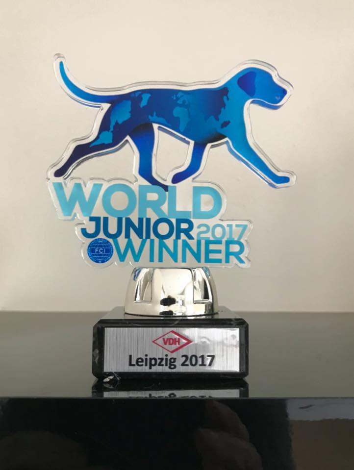 2017-11-leipzig-world-junior-winner-rony-doedijns